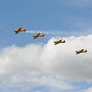 Canadian Harvards by jules572