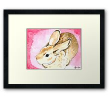 Daily Doodle 1 - Mini Rex Rabbit Watercolor Framed Print