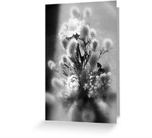 wildflower bouquet, black and white Greeting Card