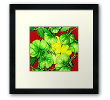 Pretty Colors Framed Print