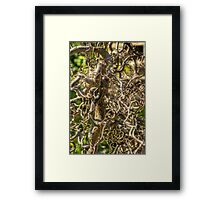 Complicated Family Trees Framed Print