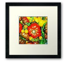 Many Tomatoes Framed Print