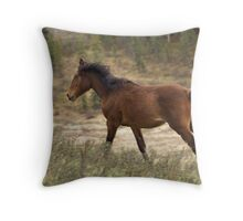 Time to go! Throw Pillow
