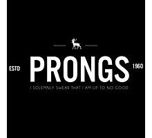 Prongs 1 Photographic Print