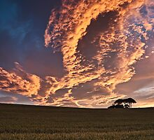 Cornfield Sunset - County Durham, UK by David Lewins
