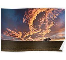 Cornfield Sunset - County Durham, UK Poster