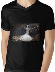 Rocky Plunger Mens V-Neck T-Shirt
