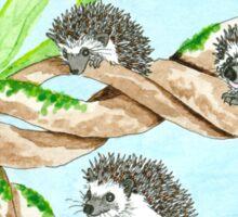 Daily Doodle 5 - Hedgehog Climbers Sticker