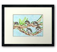 Daily Doodle 5 - Hedgehog Climbers Framed Print