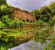 Waytown Limekilns-Grand Western Canal-UK by David-J