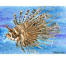 Daily Doodle 8 - Lionfish Photographic Print