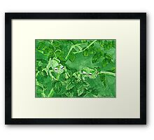 Daily Doodle 9-Camo Frogs Framed Print
