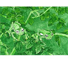 Daily Doodle 9-Camo Frogs Photographic Print