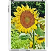 Turn Your Face to the Sun iPad Case/Skin