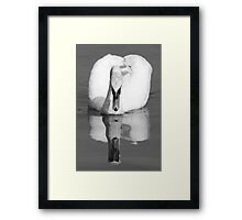 whos that handsome fella........ Framed Print