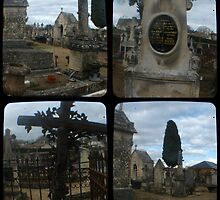 Village Cemetery through the viewfinder by seriykotik