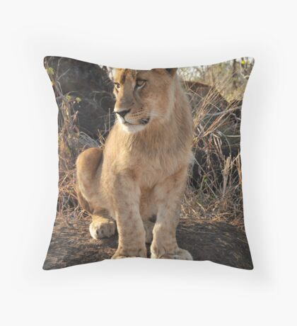 I'll grow into these paws.....! Throw Pillow