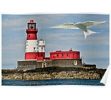 Farne Island Lighthouse Poster