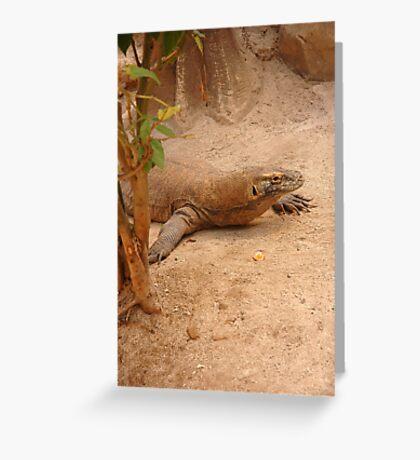 komodo dragon Greeting Card