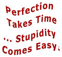 Perfection Takes Time Over Stupidity by Vy Solomatenko