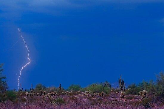 Lightning Bolt Strike in The Desert by Bo Insogna