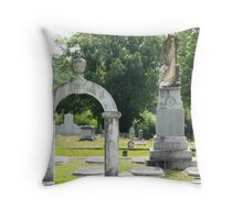 Mary Protects Confederate Col. Reed Throw Pillow