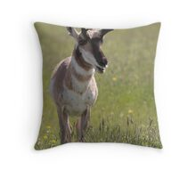Male Pronghorn Throw Pillow