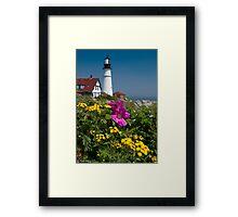Beach Rose at Portland Head Framed Print