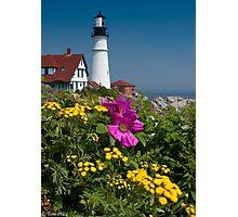 Beach Rose at Portland Head Photographic Print