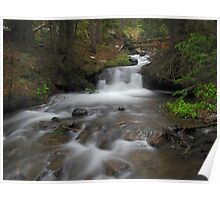 Venable Creek Cascades Poster