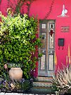 Tucson Door by Lucinda Walter
