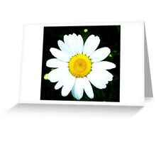 He loves me he loves me not! Greeting Card
