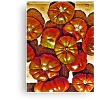 Delicious Tomatoes! Canvas Print