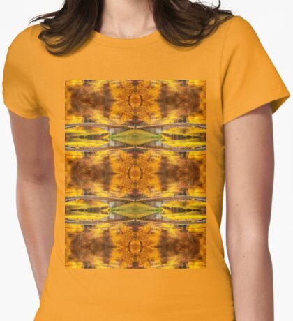 Fall over Storrow Lagoon Womens Fitted T-Shirt
