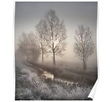 Willows in the Mist Poster