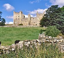 Bolton Castle by David Davies