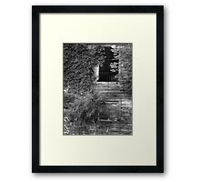 Sumac and Ivy Framed Print