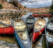 Canoes Again by Bob Larson