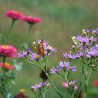 Garden Friends by James Brotherton