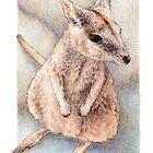 Rock wallaby (watercolour) by Laura Grogan