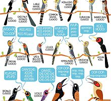 Know your cuckoo songs by rohanchak