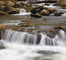 Flowing Veil by Gary L   Suddath