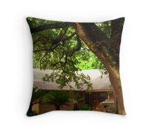 Twenty Years And Still An Empty House.   Throw Pillow