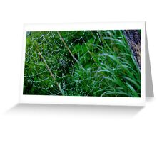 Web of Water Greeting Card