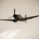 Flying Legends by Nigel Bangert