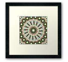 Star Green Flowering Buds Framed Print