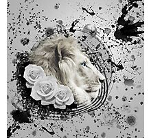 Abstract Lion Photographic Print