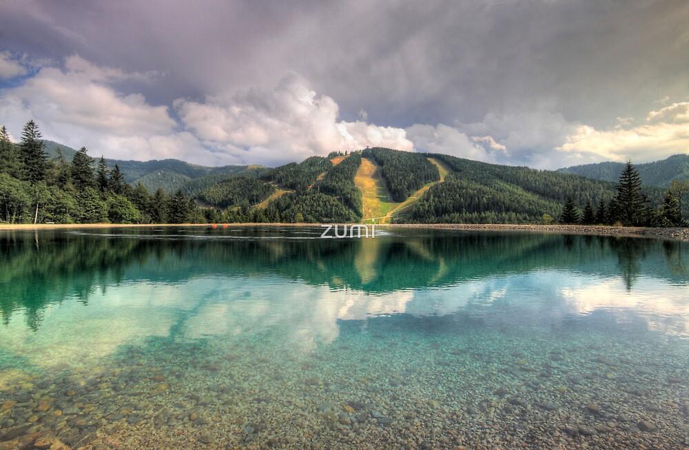 Mirrored pistes by zumi