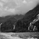 Waterfalls in Monochrome by Peter Hammer