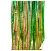 Bamboo Rods Poster